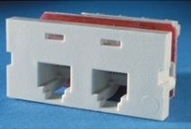 ORTRONICS CAT-3 CLARITY DUAL MODULE (FOG WHITE)